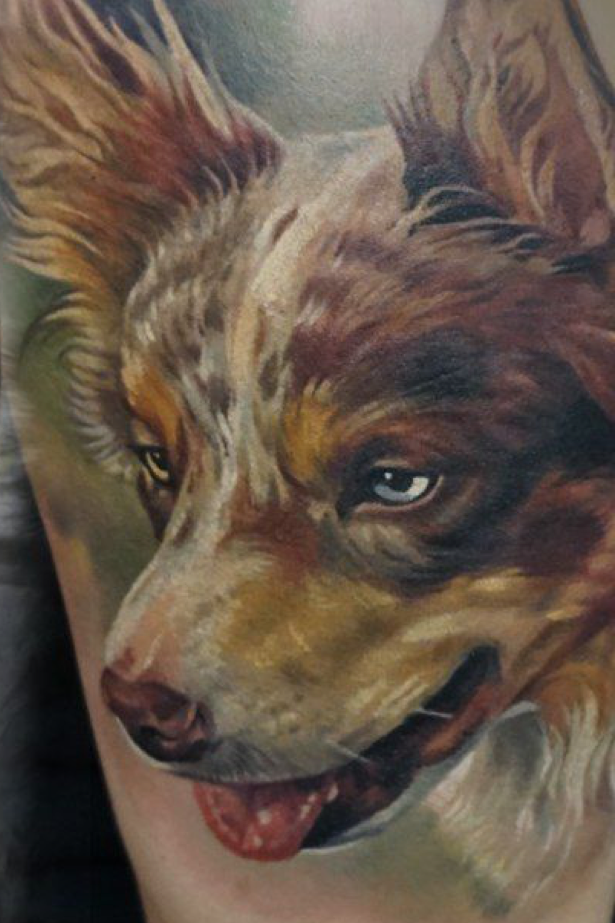 Realistic Color Dog Portrait Tattoo Made By Giena Revess A Traveling Tattoo Artist Sleeve Tattoo Dog Portrait Tattoo Tattoo Artists Dog Portraits