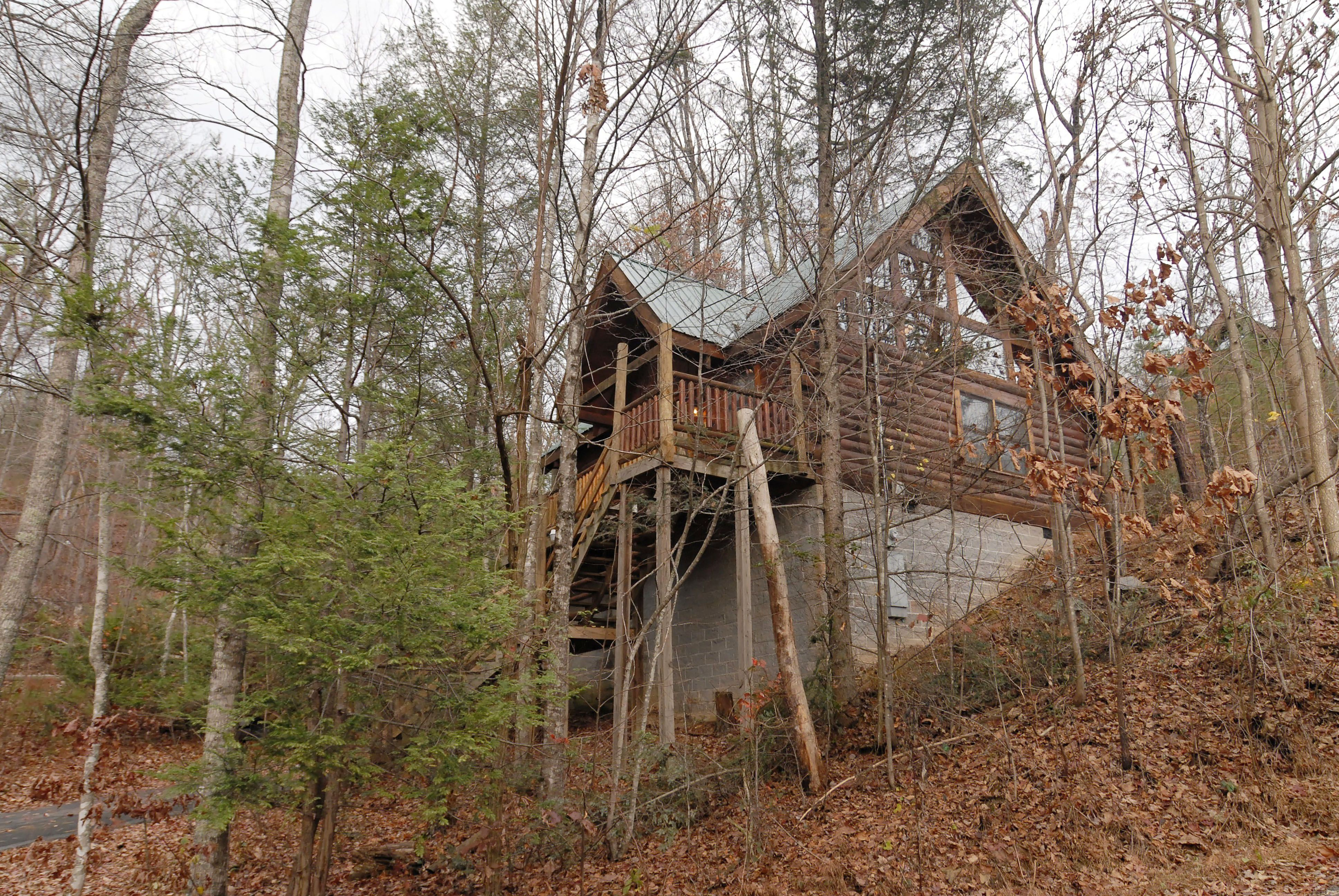 Petfriendly secluded cabin in the Smoky Mountains. 1