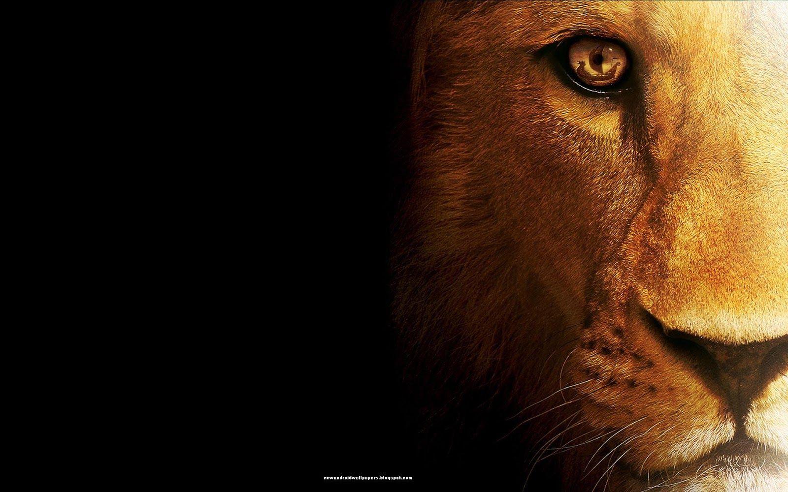 Osx Lion Wallpaper 1600×1000 Mac Lion ...