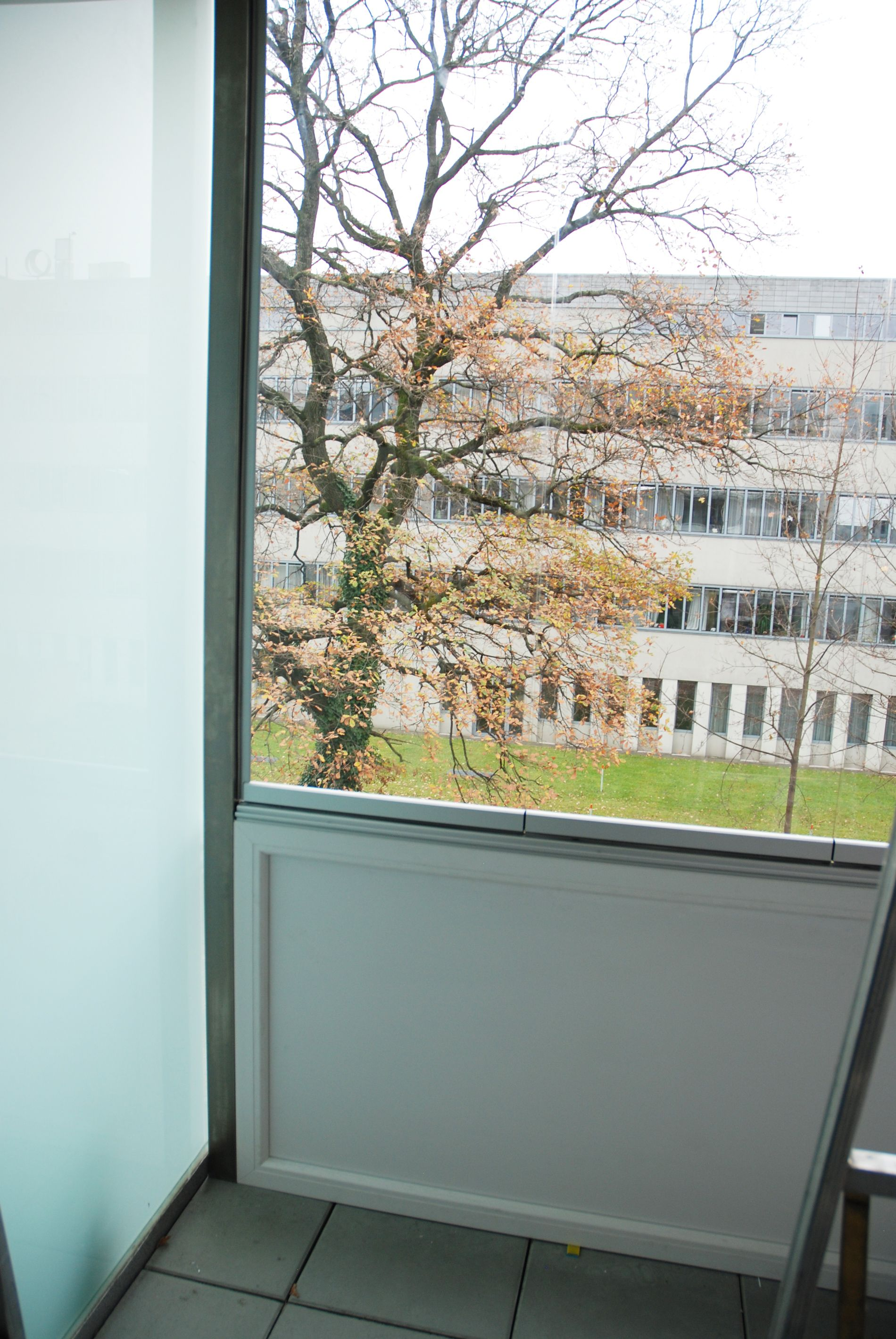 Wind Und Regenschutz Fur Balkon Verglasungen Balkon Terrasse