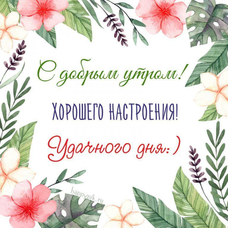 Pozhelaniya Horoshego Nastroeniya I Udachnogo Dnya V Kartinkah S