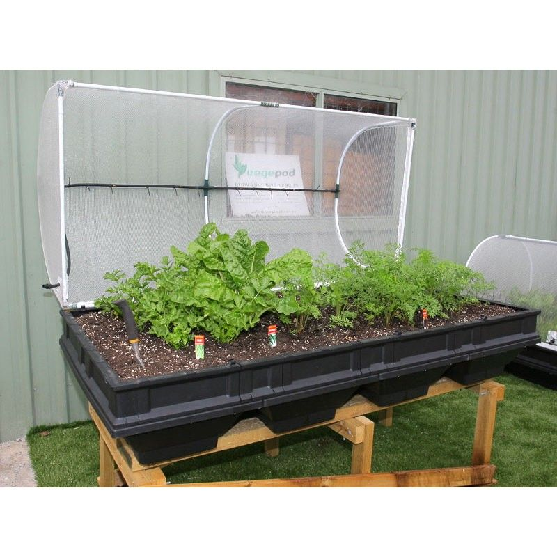 Buy Vegepod Large Self Watering Container Garden With