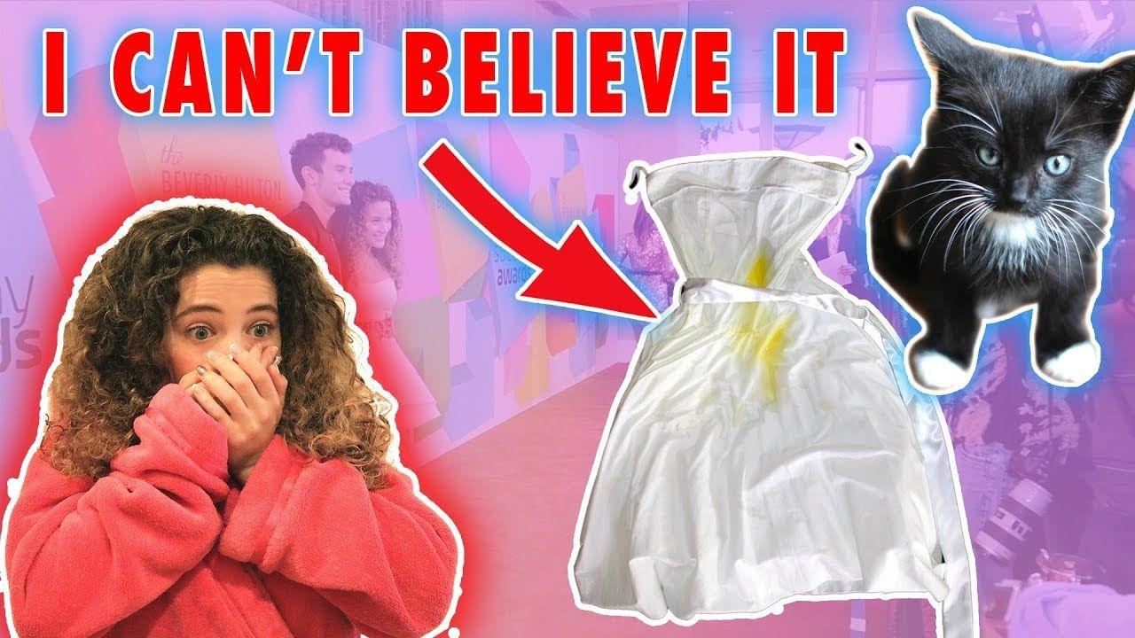 My Kitten Ruined My Dress America S Got Talent Sofie Dossi I Dress