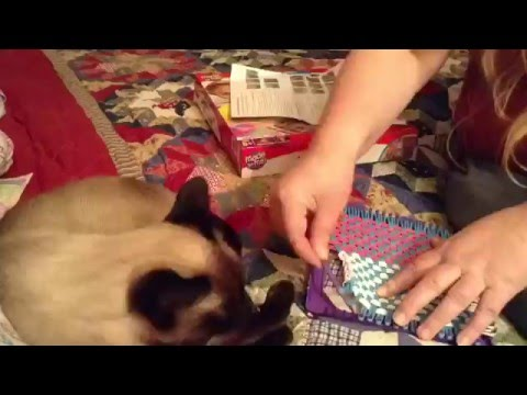 (112) Loops & Loom Designer kit, making purse/ book bag for 18 inch doll...American Girl, Mylife, OG...etc - YouTube