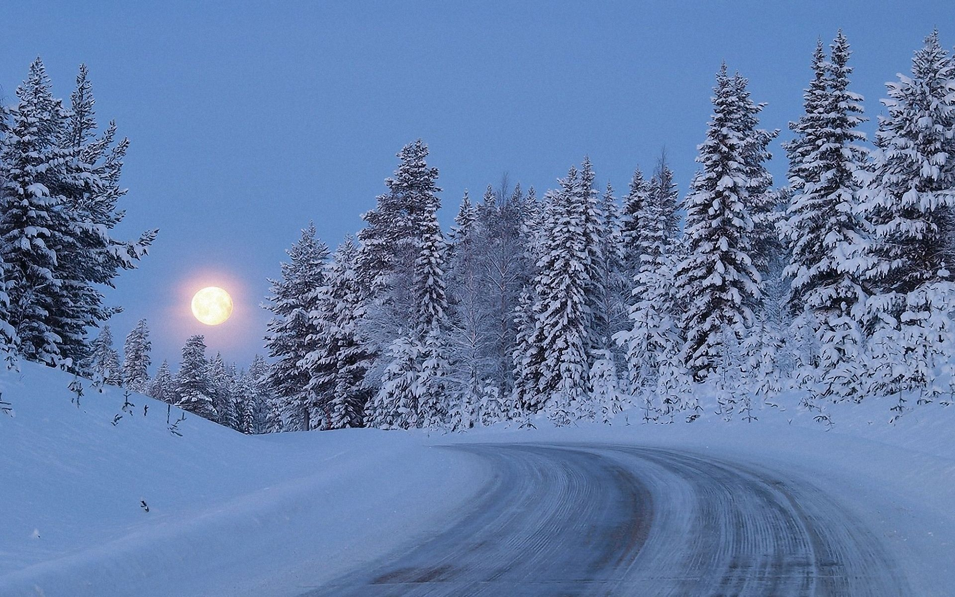 The Snow Moon Is Assigned To The Cabin In The Talliston Gardeners Almanack Winter Wallpaper Snow Forest Road