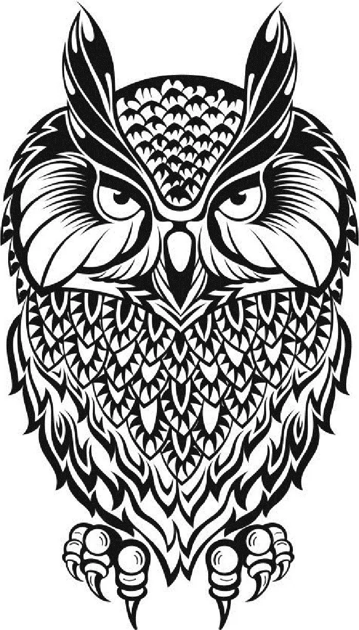 Owl Vector Black And White Amee House Owls Drawing Animals Black And White Owl Vector