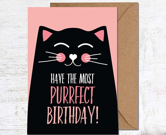 Funny Cat Card Birthday CardCat Lover Gift