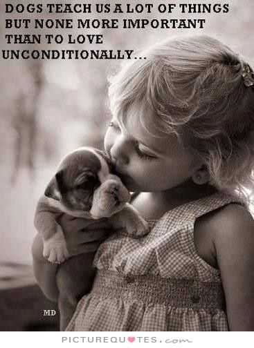 Love Animal Quotes Extraordinary Dogs Teach Us A Lot Of Things But None More Important Than To Love