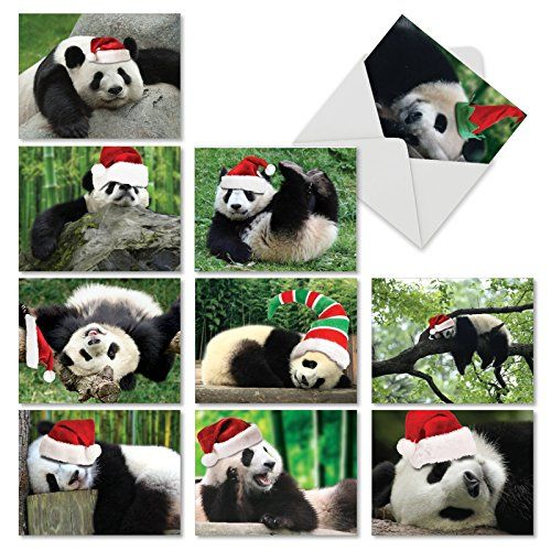 M6471XSG Holiday Pooped Pandas 10 Assorted Christmas Note