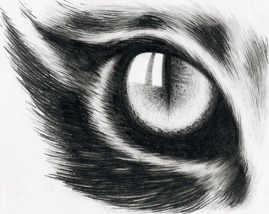 Eye of a cat by hitforsa Cat eye tattoos, Cat eyes