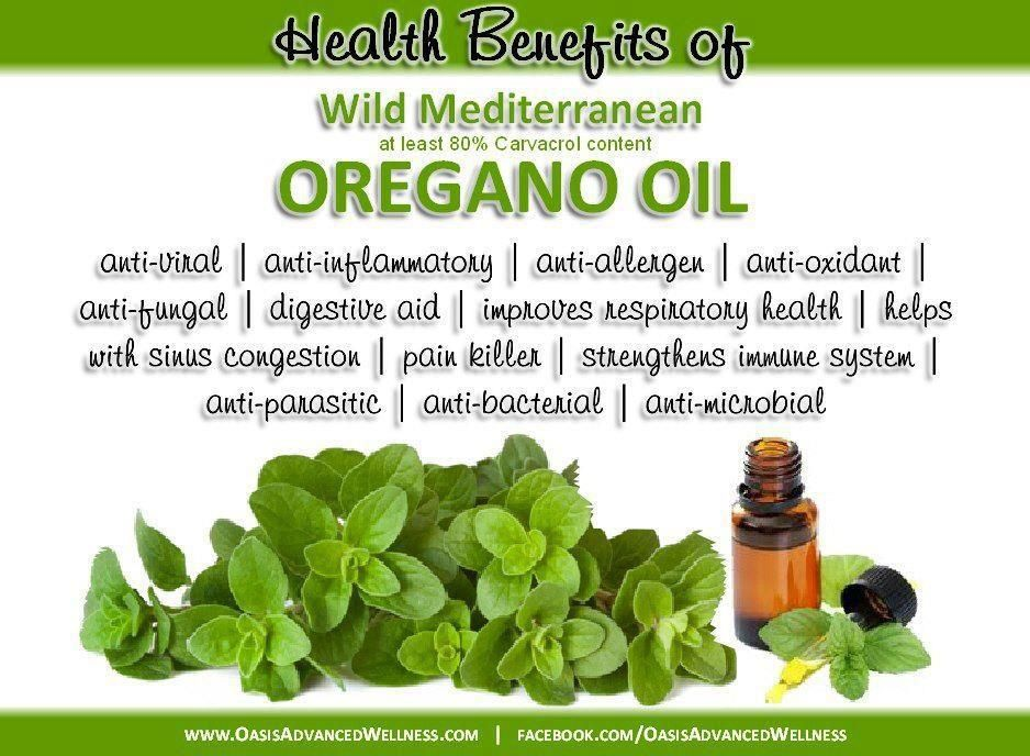 how to make oregano oil at home