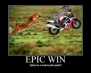 This cracks me up! When life has a Lion chase you jump on a motorcycle, and hull ass!