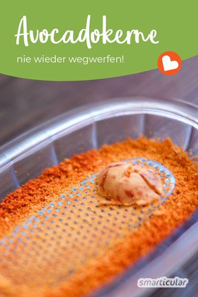 Erstaunliche Anwendungen für Avocadokerne – nie wieder wegwerfen!