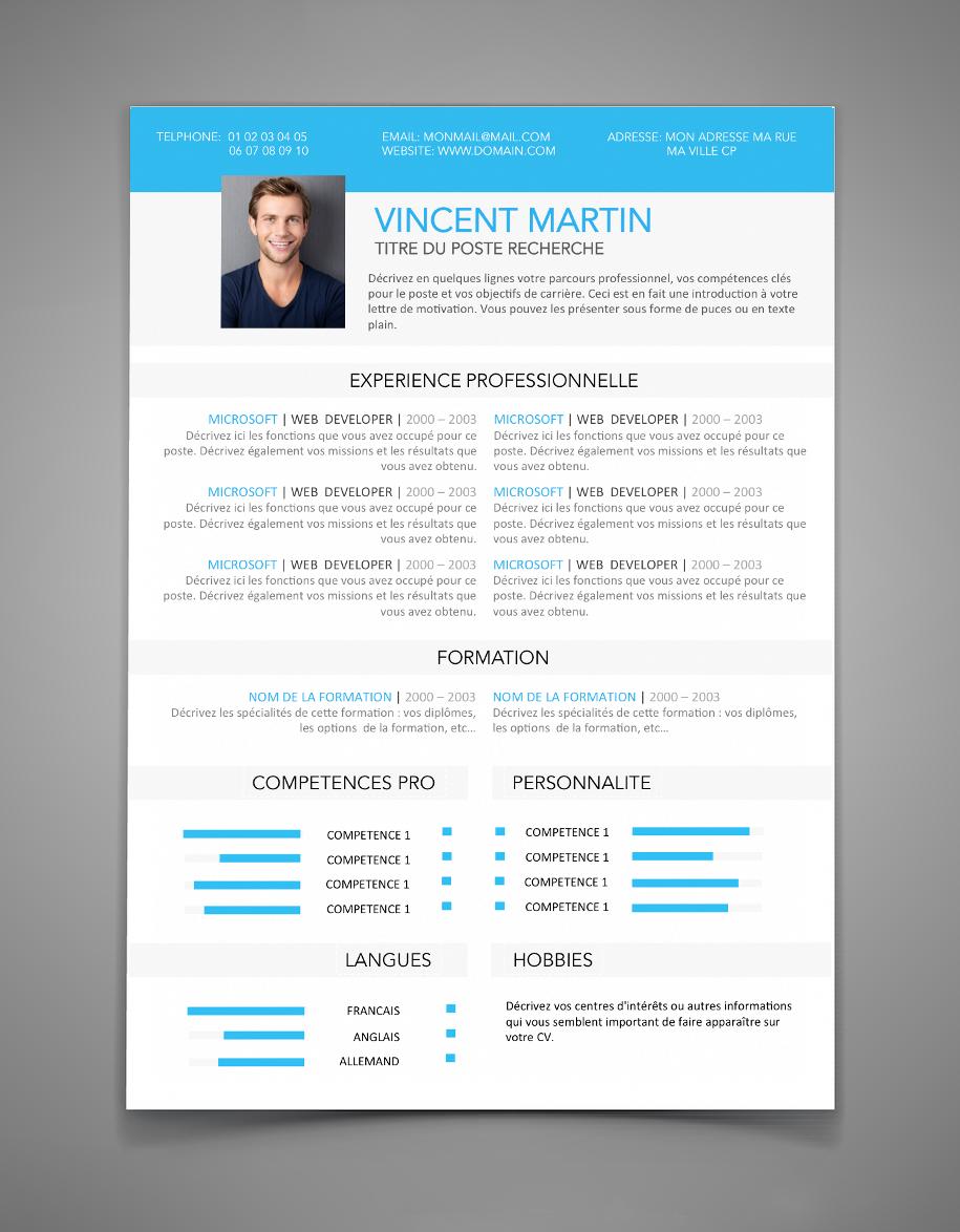 Cv 4 A Imprimer Resume Resume Cv Good Company