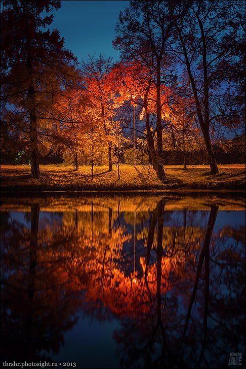 Night Park by A E