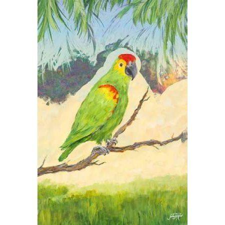Tropic Bird in Paradise II Canvas Art - Julie DeRice (24X36)