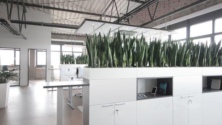 industrial style commercial office interiors - Buscar con Google - jardineras modernas