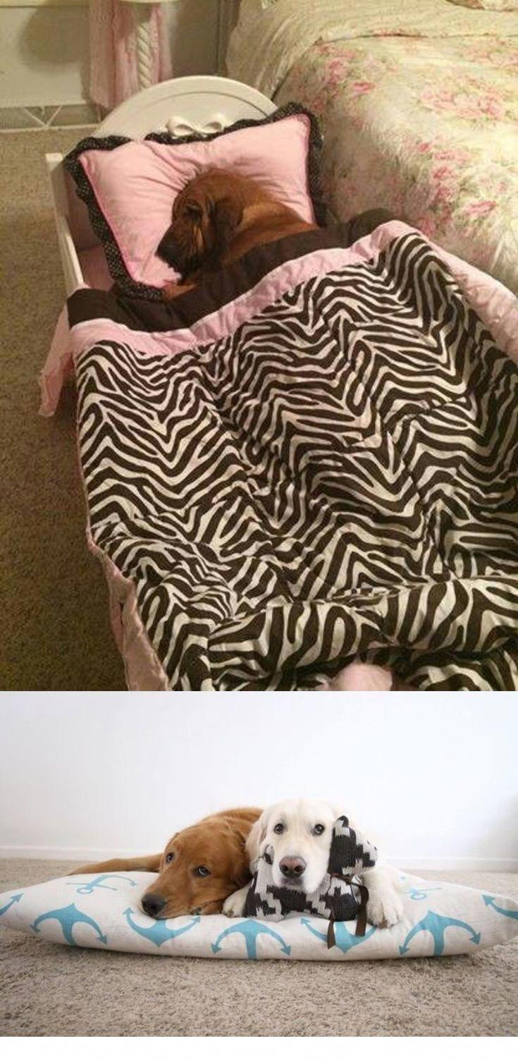 Ultimate Dog Bed Heated dog bed, Designer dog beds, Dog