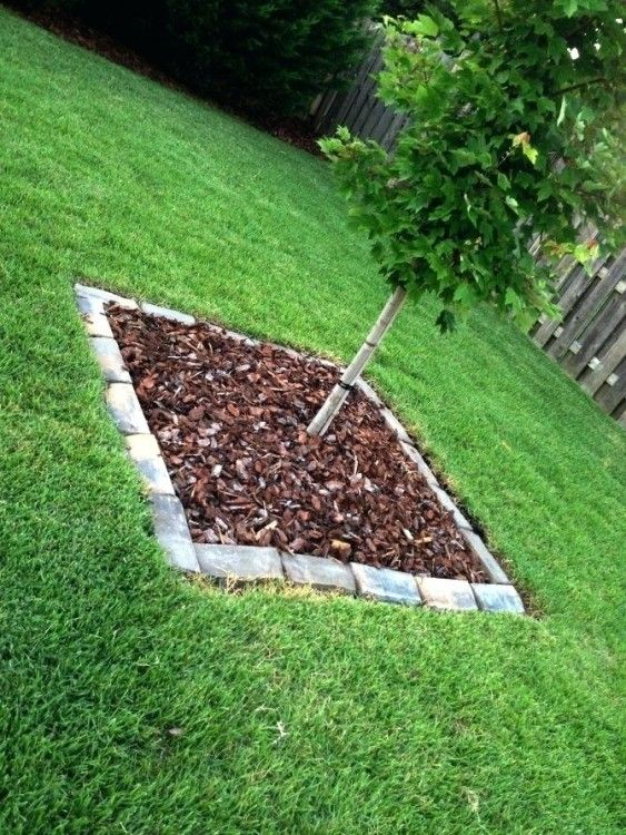 Garden Bed Liner Ideas Garden beds, Bed liner, Garden