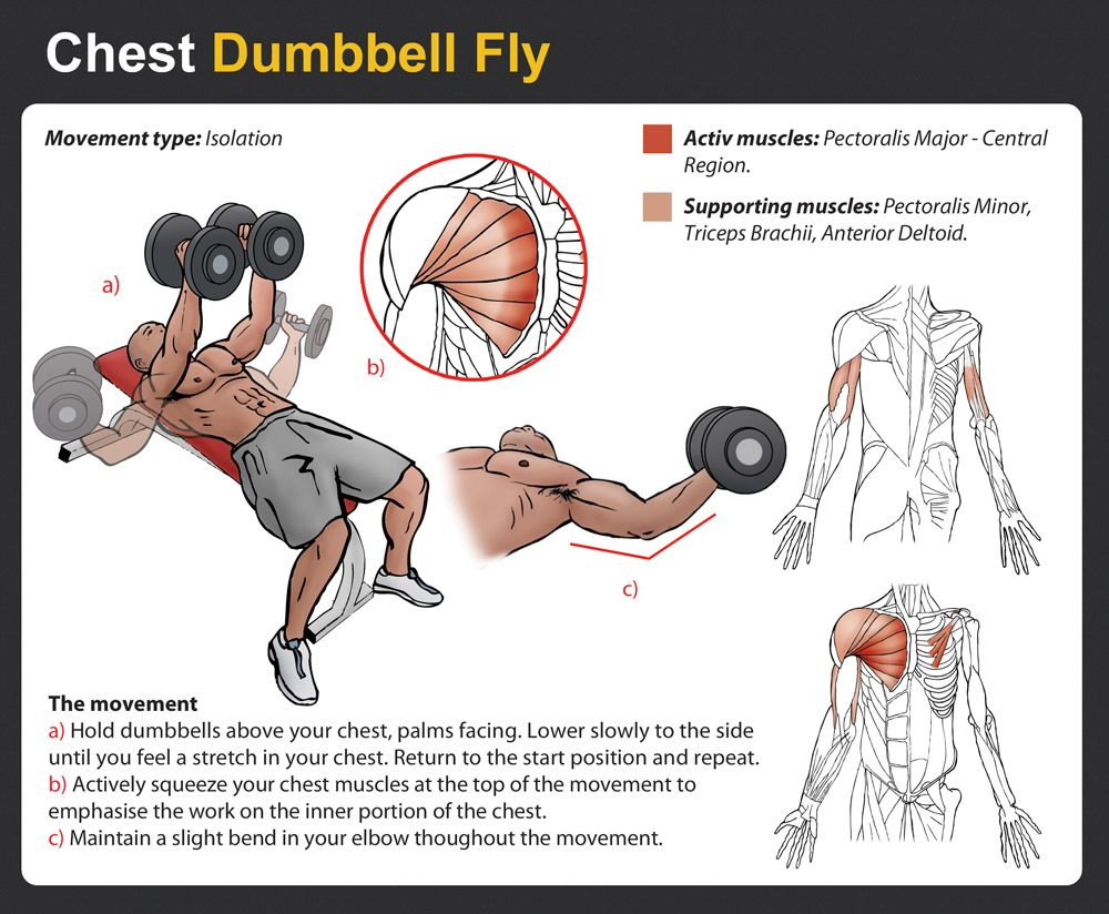 db pullover chest - Google Search | Exercise | Pinterest | Exercises