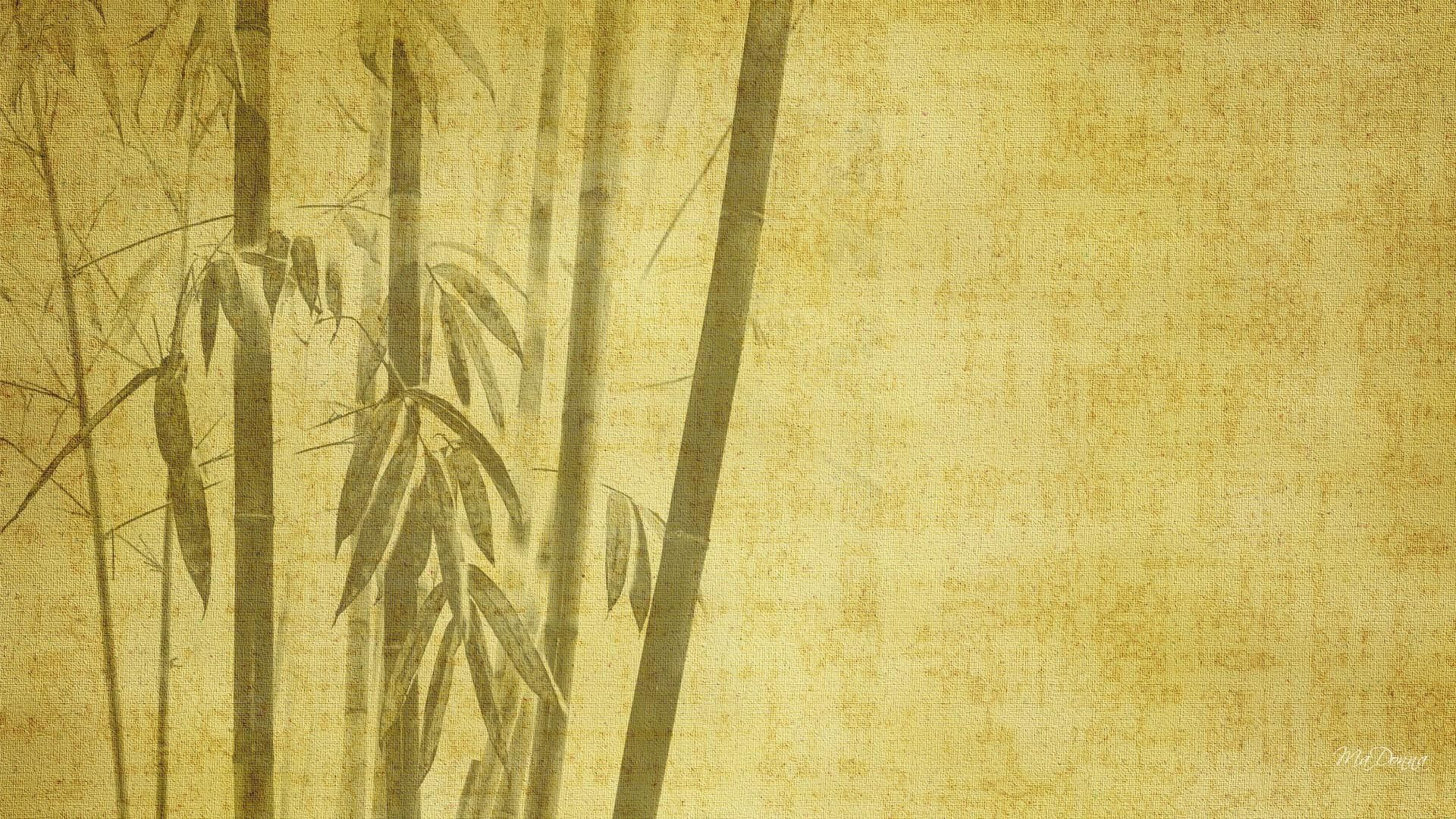 bamboo wallpapers  u0026gt  u0026gt  backgrounds with quality hd