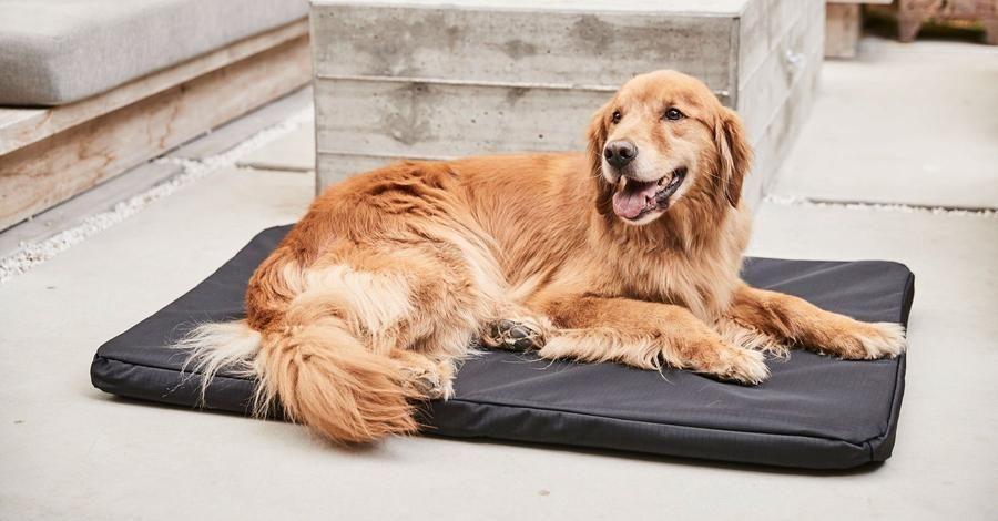 K9 Ballistics Crate Pads Chew Resistant Seamless Edge Dog Crate Pads Crates Dog Crate