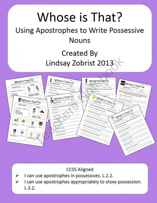 Possessive Nouns Worksheet Packet Common Core 2nd 3rd