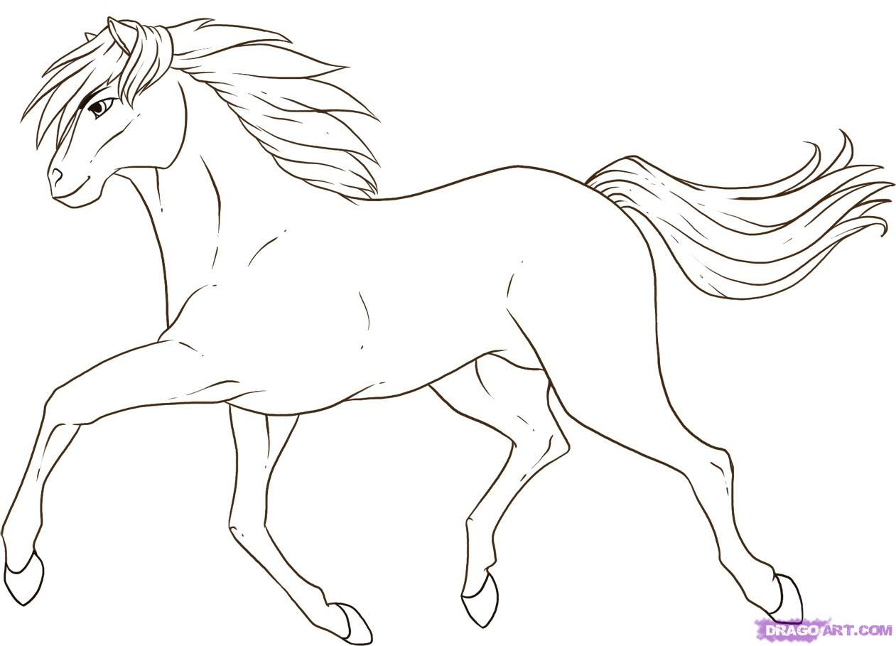 Horse Drawings  How To Draw A Running Horse Step 7