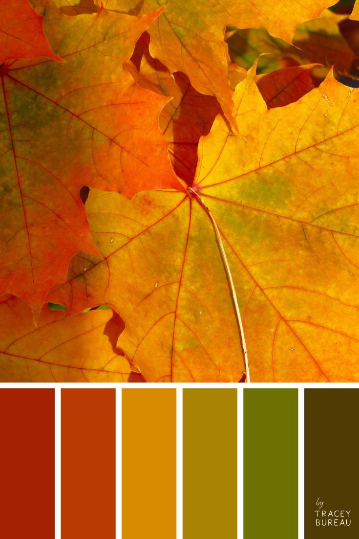 Bright Maple Leaves   Wedding Color Palette   Autumn Shades   Color Palette   Color Scheme   Color Ideas for the home   Bright Shades of Color    Color Palette Inspiration #autumncolorpalette