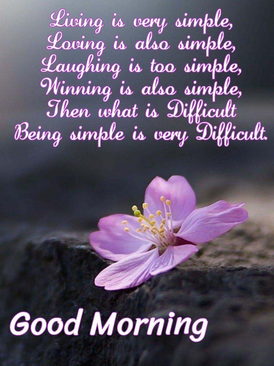 Good Morning Living Is Very Simple Good Morning Quotes Morning Inspirational Quotes Good Morning Friends Quotes