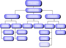 Resultado de imagen para organigrama
