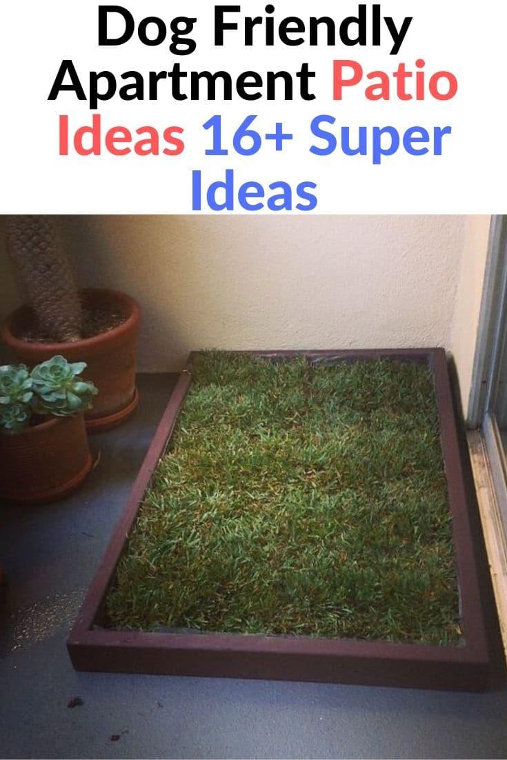 Dog Friendly Apartment Patio Ideas 16