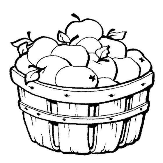 Apples In The Basket Coloring Page Fruit Coloring Pages Fall