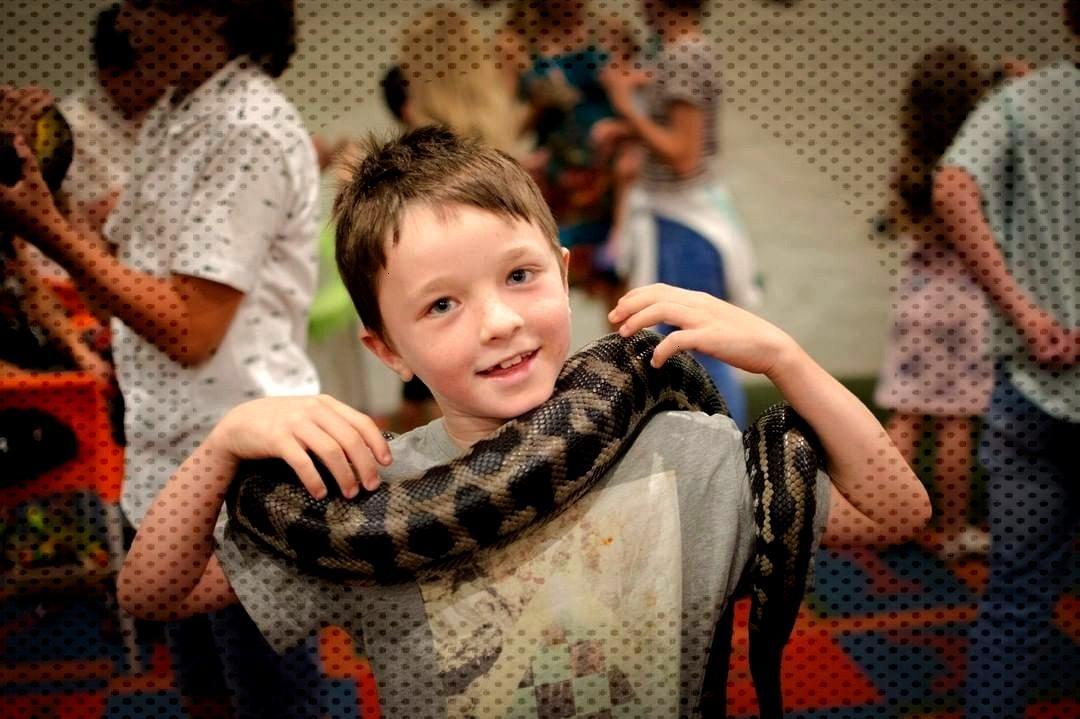 Aussie Aussie Aussie! Oi Oi Oi! This Australia day long weekend we have loads of fun kids activi
