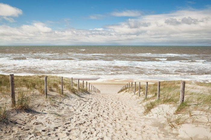 fototapete sand weg zum meer strand im sonnigen tag