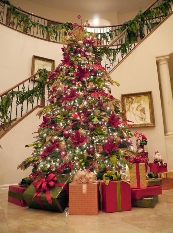 Balsam Fir Christmas Trees Hill Tree Xmas