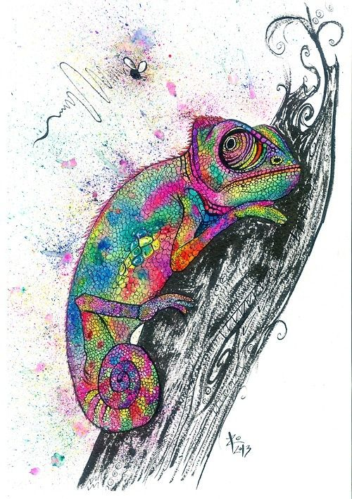 Realistic Chameleon Drawing | www.pixshark.com - Images ...