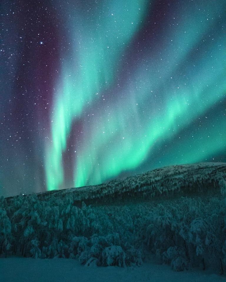 "Northern Lights Photograph Art Print 13/"" x 19/"" Aurora Borealis"