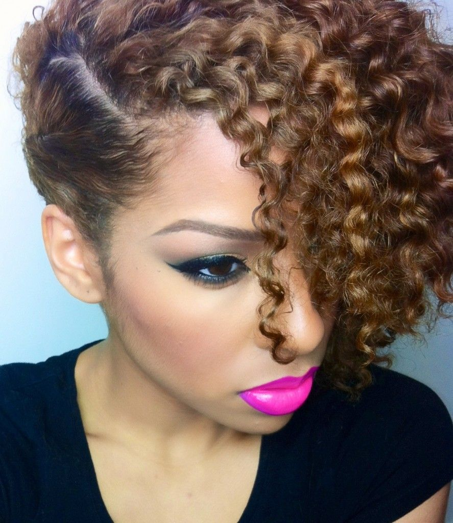 Wondrous 1000 Images About Curly Hair Inspo On Pinterest Curly Ponytail Short Hairstyles For Black Women Fulllsitofus