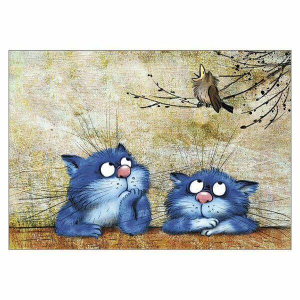 Not Again Funny Blue Cat Greeting Card Rina Zeniuk Humorous Cats Greetings Cards…