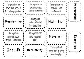 Living Things 7 Life Processes Packet Printable Teaching Resources Co Teaching Education And Literacy
