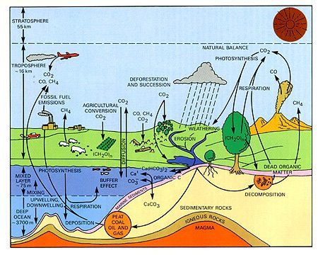 Carbon cycle diagram vizualizations of geographic information and carbon cycle diagram ccuart Choice Image