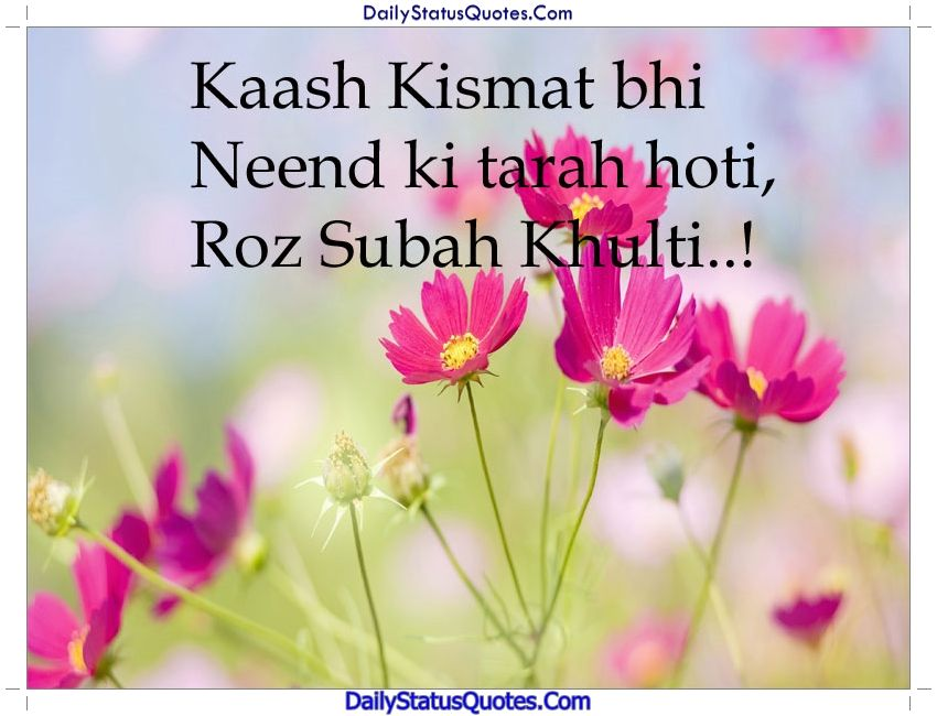 Kaash Kismat Bhi Daily Status Quotes Status Quotes Status