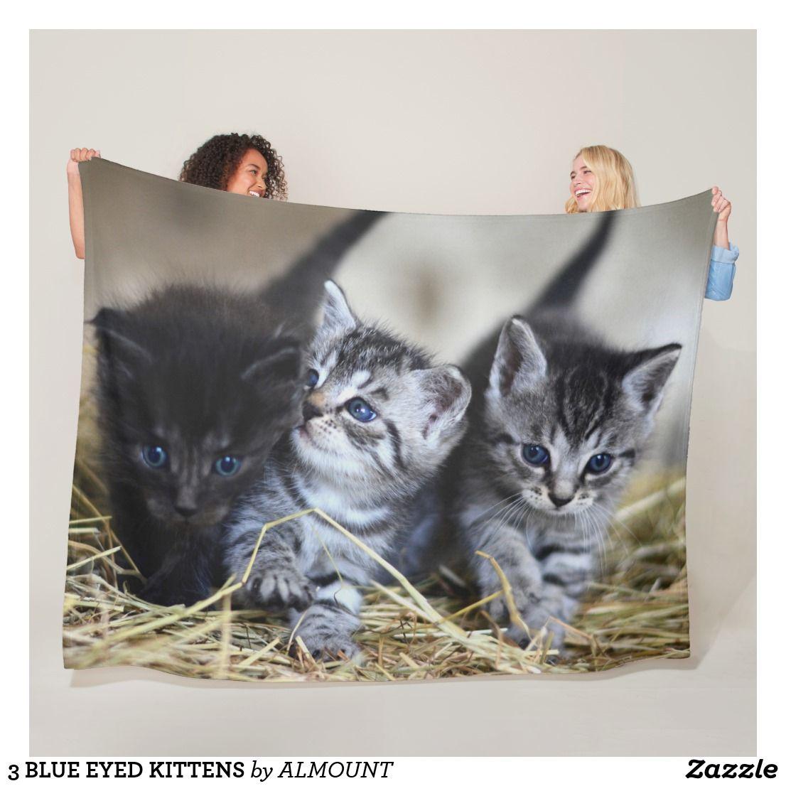 3 Blue Eyed Kittens Fleece Blanket Zazzle Com Fleece Blanket Blanket Fleece