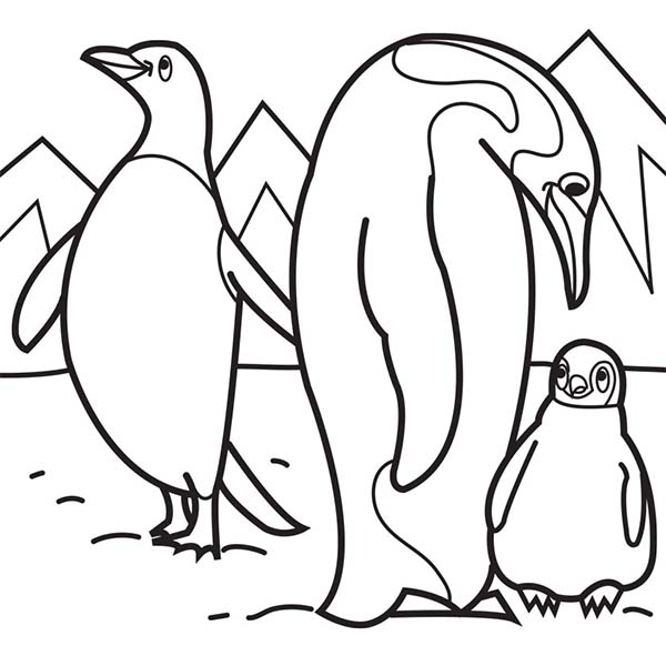 Pin Oleh Kidsplaycolor Di Arctic Animals Coloring Pages Penguin