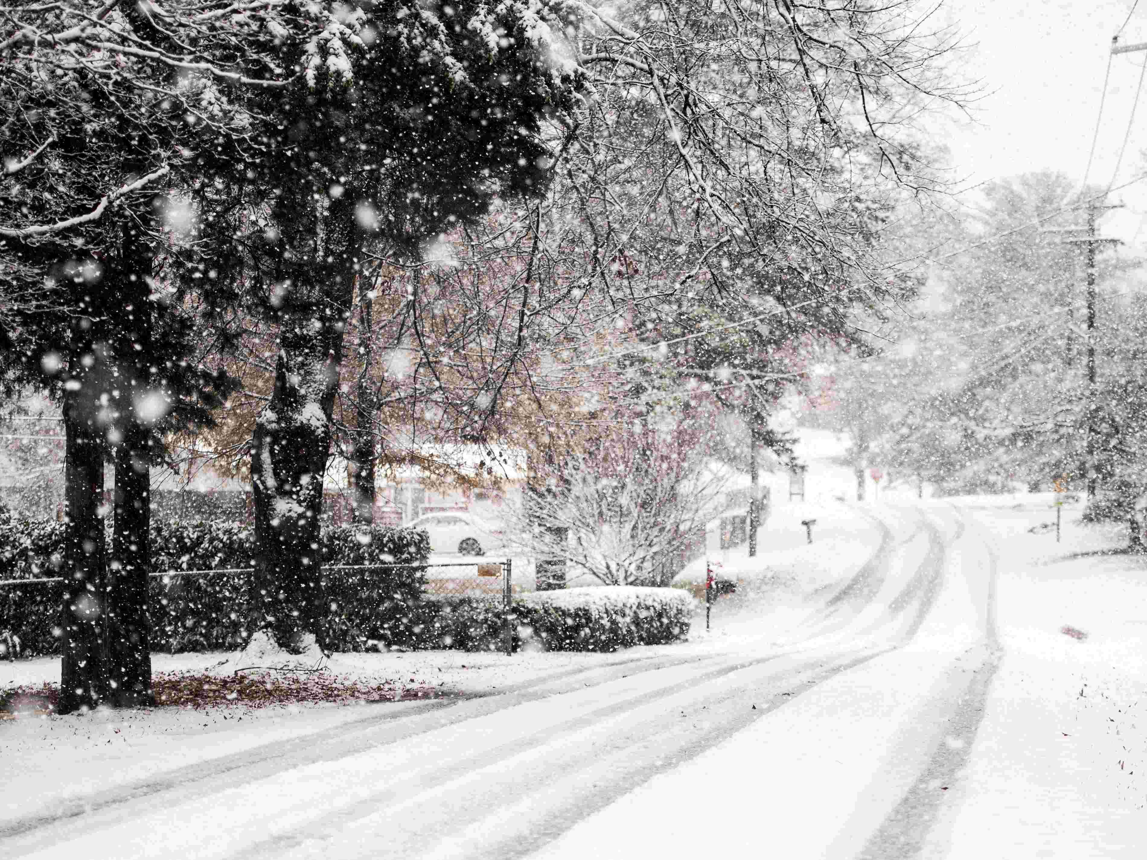 Knoxville, TN 2018 Snow, Snow images, Winter weather