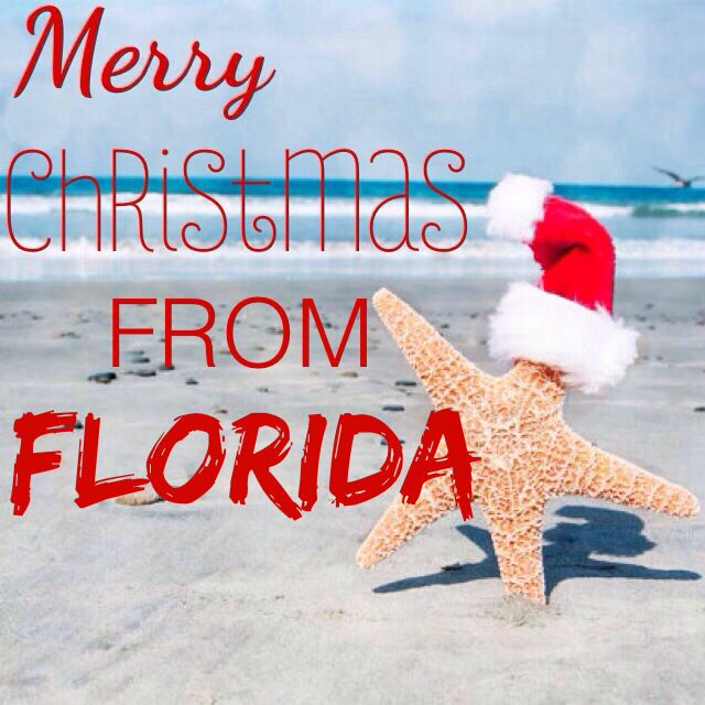 Christmas In Florida Quotes.Florida Christmas Quotes I Made Tropical Christmas
