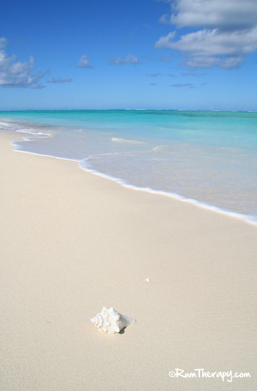 North Caicos beach....yes please! Click to read more!