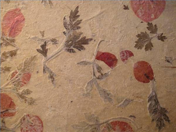 Make paper flower petals ukrandiffusion how to make paper with flower petals handmade sheet and flower mightylinksfo