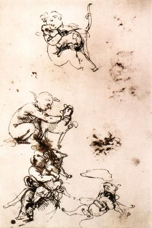 Study of a child with a cat Leonardo da Vinci